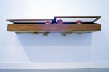 Showcase, 1994